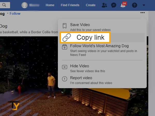 copy Facebook video in the link format